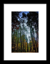 Load image into Gallery viewer, Destiny #2 - Framed Print