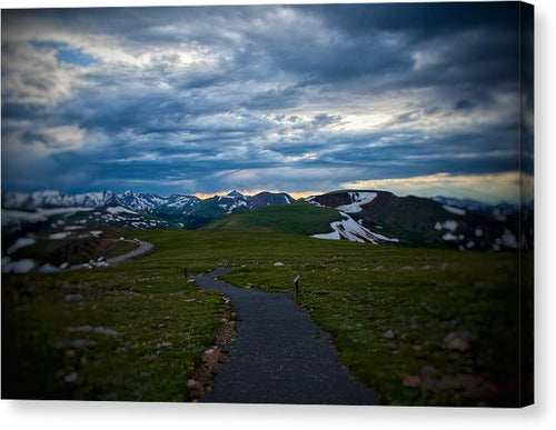 Trail Ridge Road #5 - Canvas Print