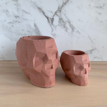 Load image into Gallery viewer, Concrete Skull pot - 7 colour choices