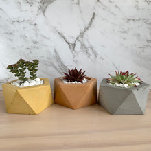 Load image into Gallery viewer, Hex Concrete Planter - 6 colour choices