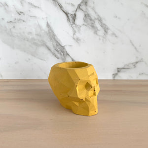 Concrete Skull pot - 7 colour choices