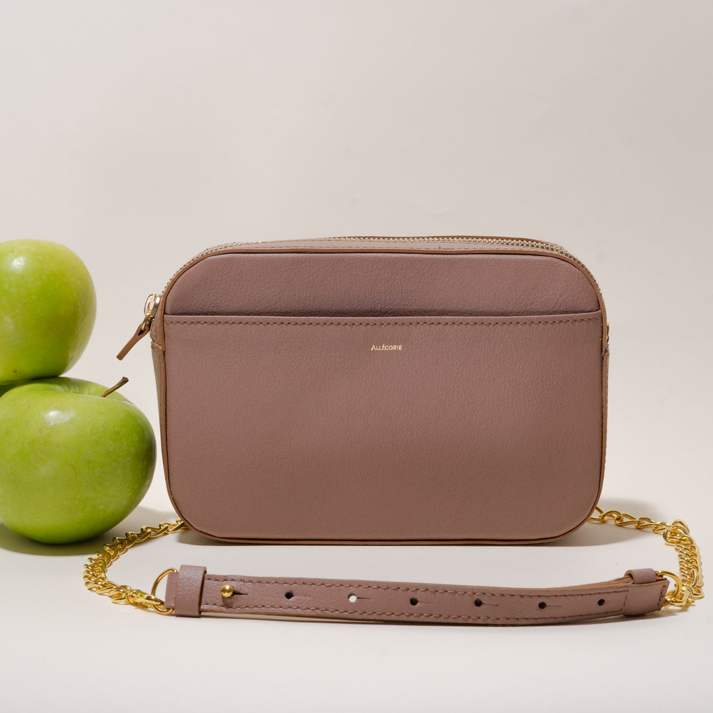Apple camera cross body around waist bag