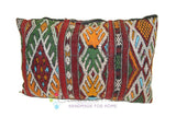 Berber Pillows BP0295