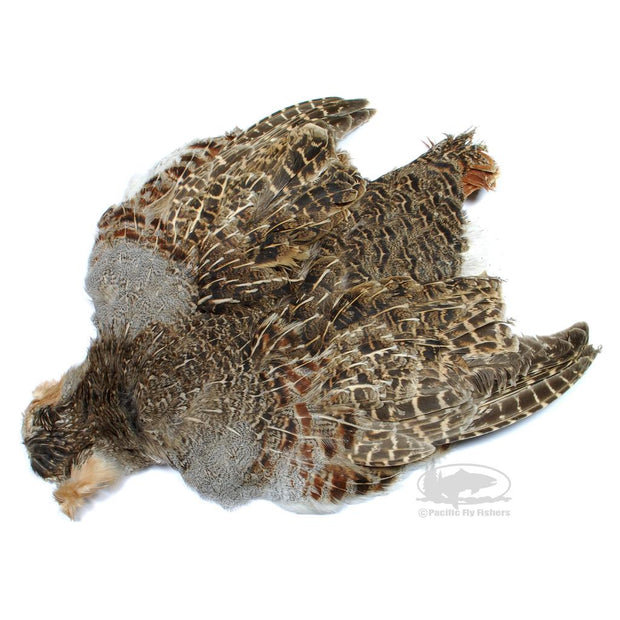 Hungarian Partridge Skins