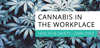 Cannabis in the Workplace - Employee - Lift Certified Inc