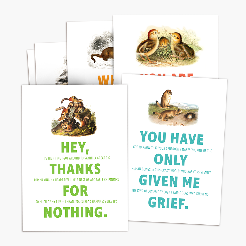 Thank You Cards 6-pack