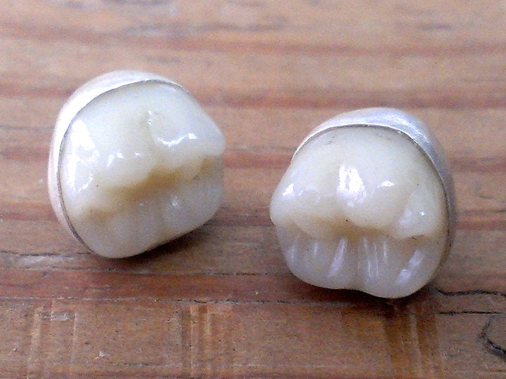 MOLAR earrings