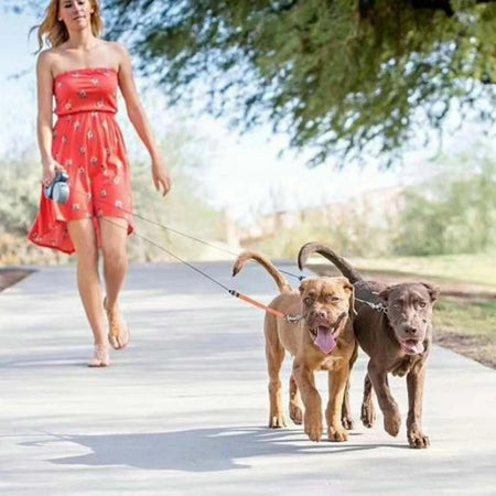 Dual Pet Retractable Leash