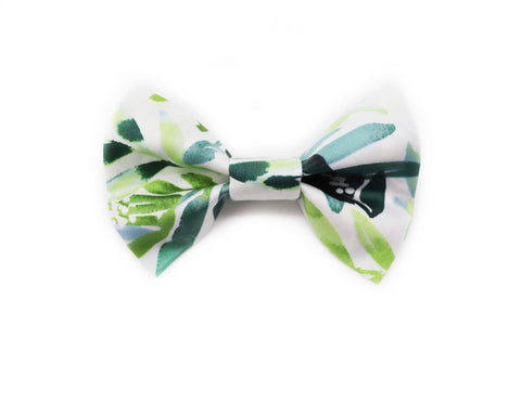 """Majesty Palm"" 