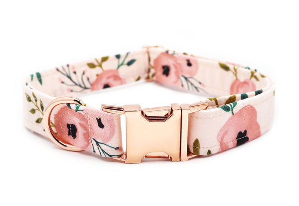"""Aurora"" 