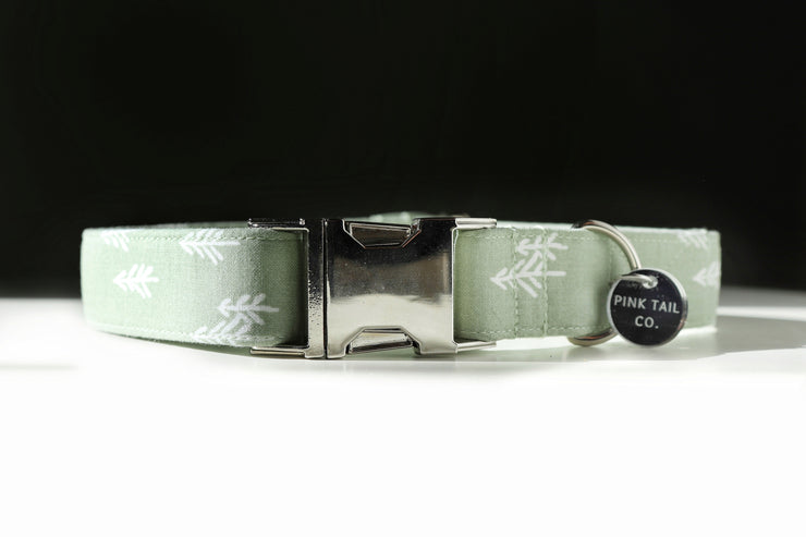 """Pine Trees"" 