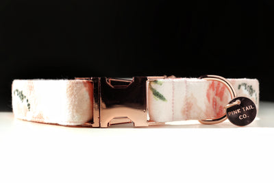 """Rosé All Day"" 