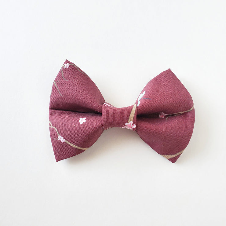 Falling in Love | Bow Tie
