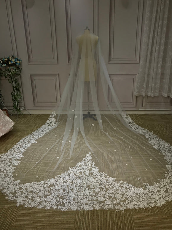 Heart shaped lace appliqués cathedral length veil
