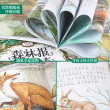 Load image into Gallery viewer, 森林报春夏秋冬故事绘本 全套12册 Forest Report (All 12 volume)