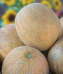 Cantaloupe- CSA Add-on