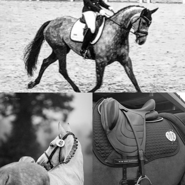 Can a saddle pad help with back problems (riders)? An experience report.