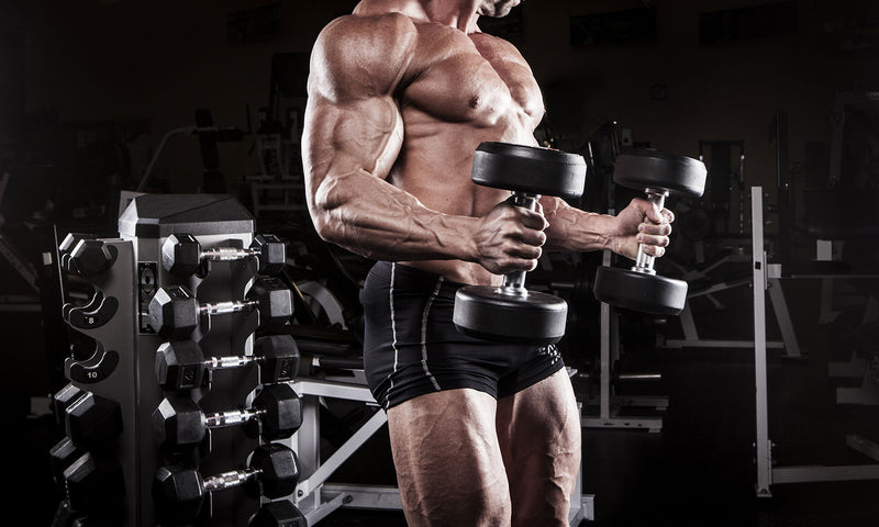 4 Unusual Tips For Growing Your Arms