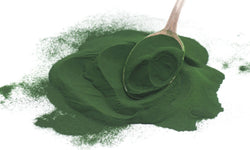6 Reasons To Take Spirulina Supplements