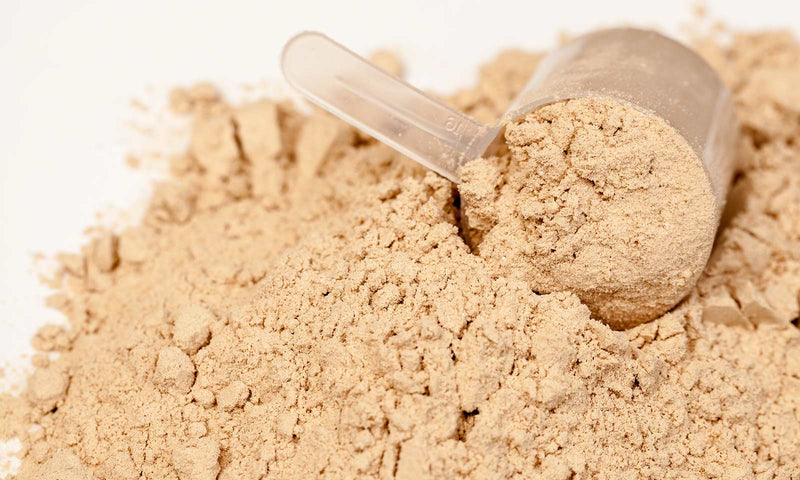 6 Things To Look For When Selecting A Protein Supplement