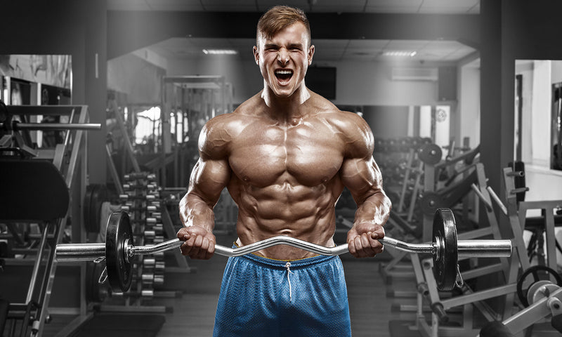 6 Tips For A Huge And Powerful Chest