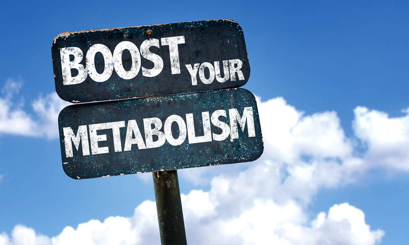 8 Effective Ways to Increase Your Metabolism