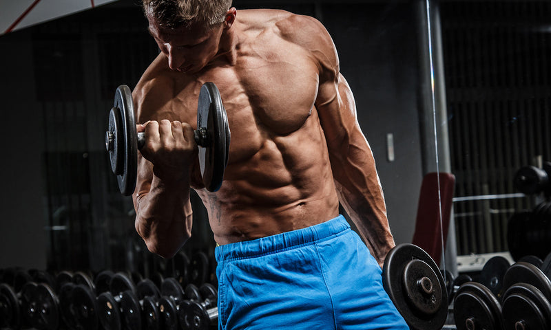 Anabolic Hormones to control to Increase your Muscle Mass