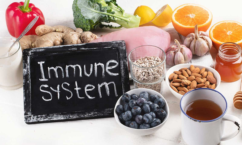 Build Up Your Immune System with Supplements
