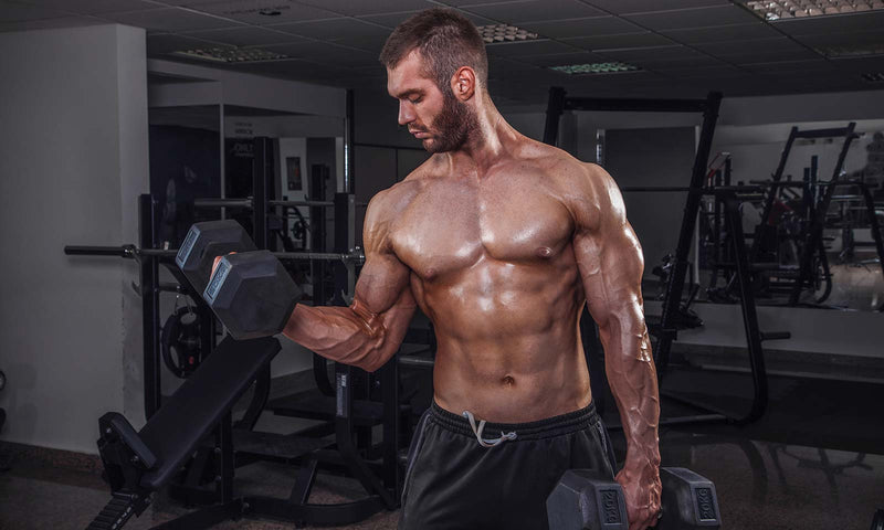 Common Myths Associated With Bulking Up