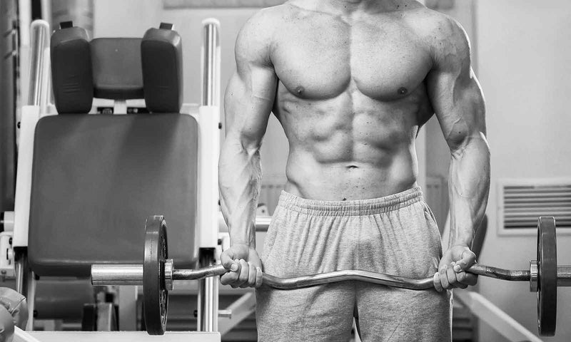Everything You Need To Know About Bodybuilding