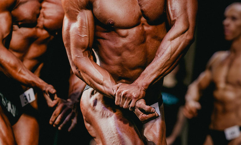 Fast Or Slow Twitch Muscle Fibres – Training Each Type And Which Grows Best?
