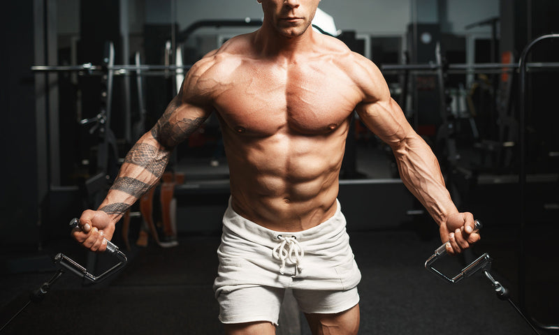 Five Of The Most Common Myths In Bodybuilding