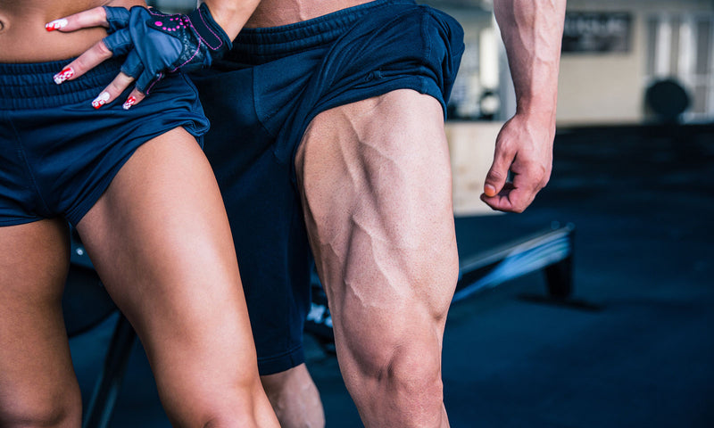 Fundamental Rules For Leg Training