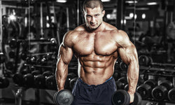 Maintain Muscle Mass With HMB