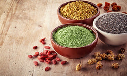 Plant Based Protein Sources To Stock Up On