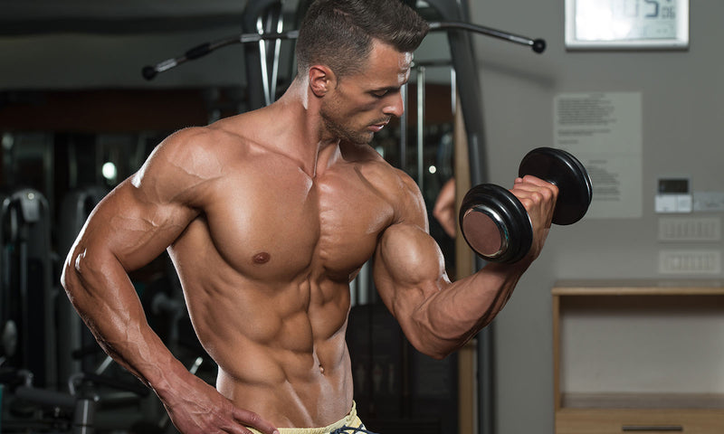 Six Laws For Building Bulging Biceps