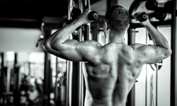 The Ultimate Guide To Building Muscle And Increasing Your Strength