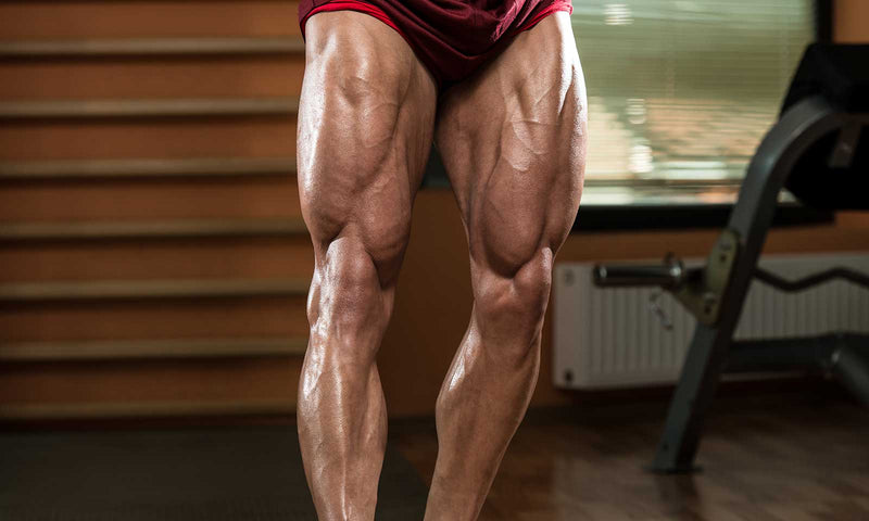Tips To Help Make Your Bodybuilding Contest Prep As Successful As Possible