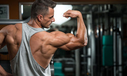 Top 5 Supplements To Build Muscle