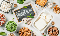 A Simple Introduction to Protein for Beginners