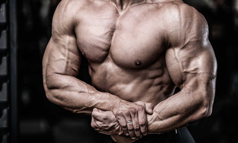 Vital Things To Know If You're Trying To Bulk Up