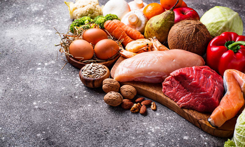 What is a Paleo Diet? – The Top Paleo Diet Foods