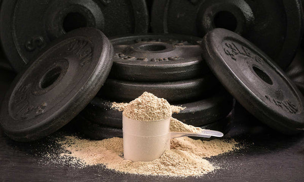 Our Third Party Protein Testing Program and Amino Spiking – A Detailed Guide