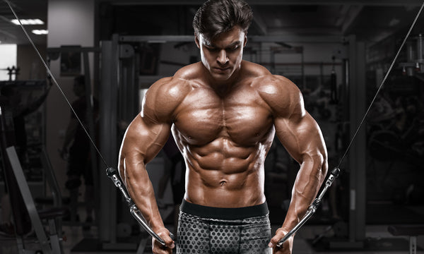 Your Ultimate Guide on Building Strength and Size