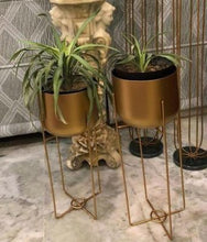 Load image into Gallery viewer, Hold me High – Golden Metal Planter – Set of 2