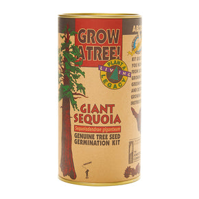 Tree Growing Kit - Giant Sequoia