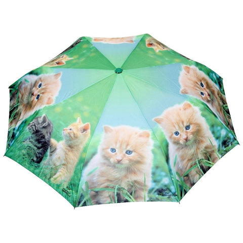 FabSeasons Cute Cats and Kittens Teddy Print 3 fold Yellow Umbrella