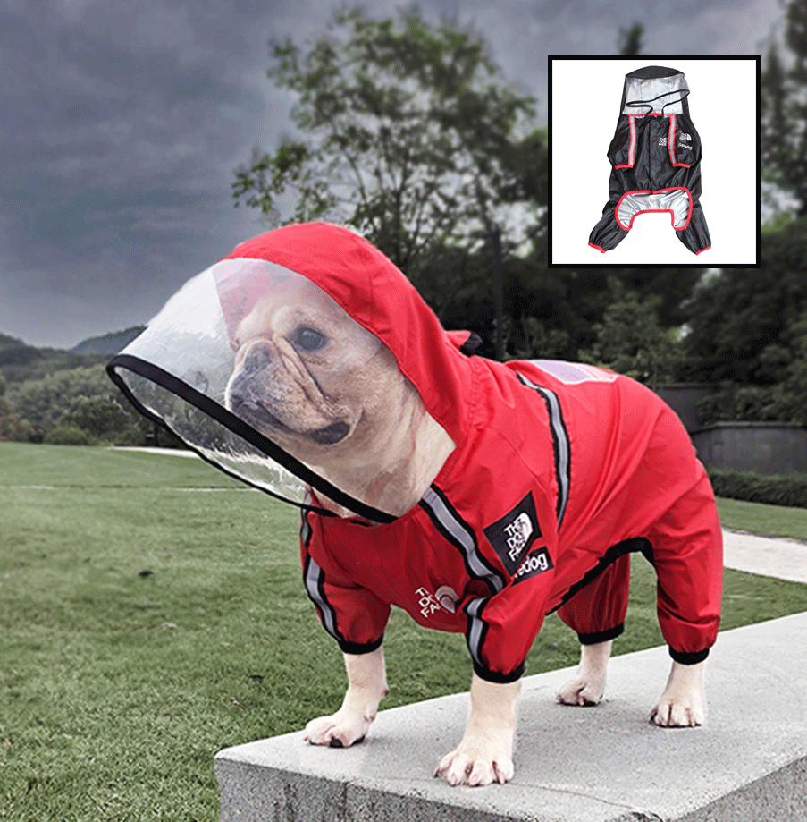 Frenchie raincoats with hoods