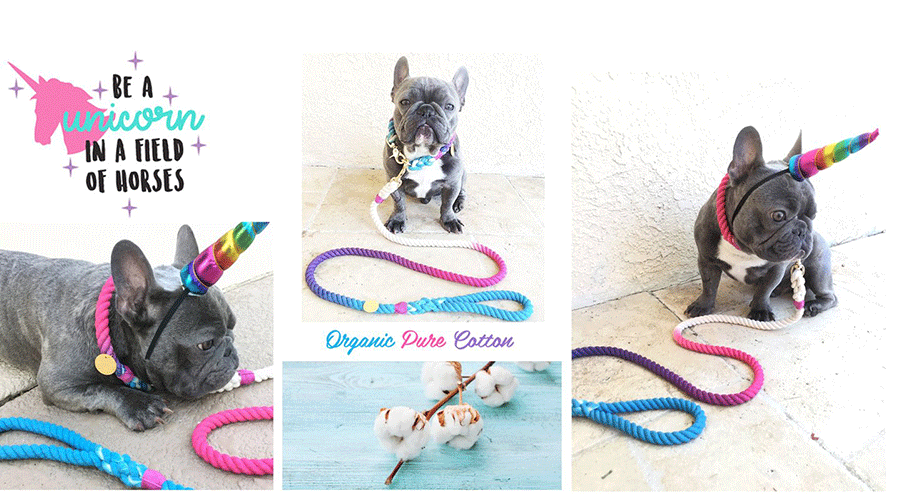 Frenchiestore Unicorn Collar and leach for Frenchie