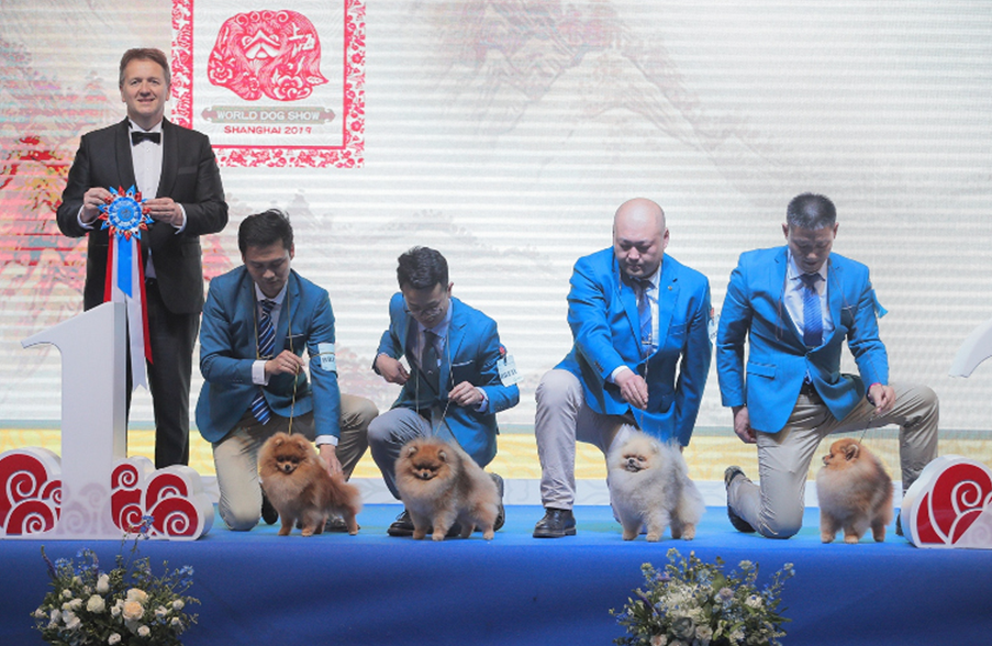 World Dog Show winners 2019